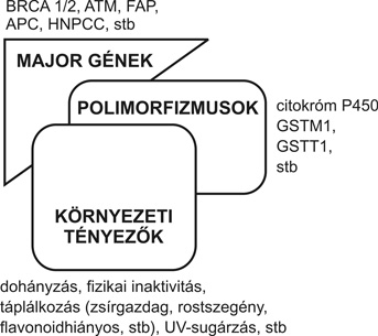 genetikai tényezők a látásromlás etiológiájában)