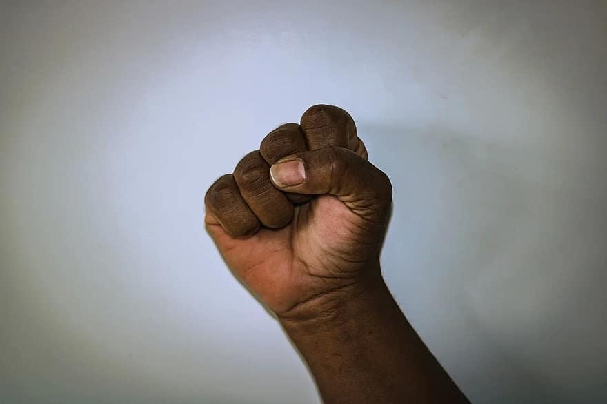 melyik ujj felelős a látásért