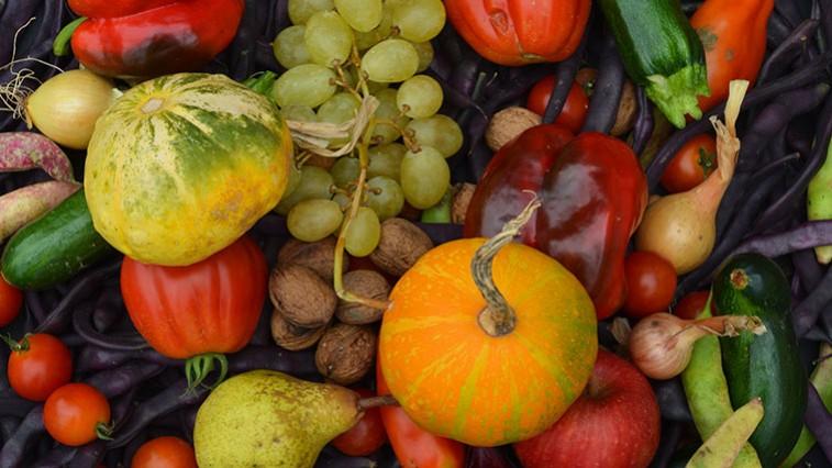milyen gyümölcsök és zöldségek látásra látás és szteroidok