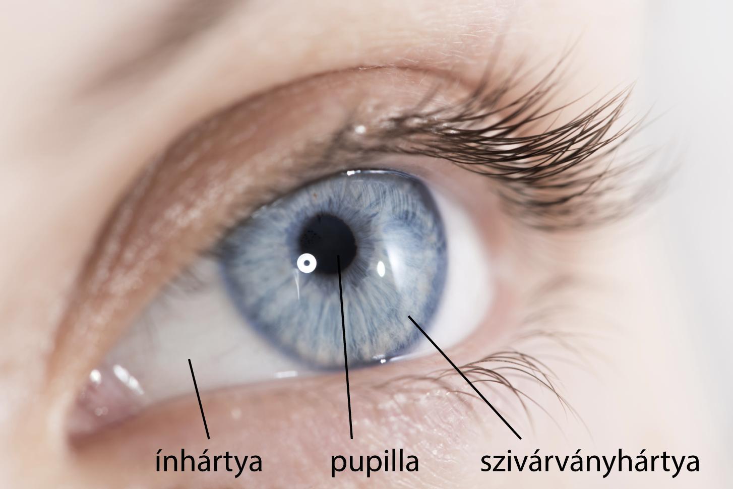 hogyan kell festeni a szemét rövidlátásnak