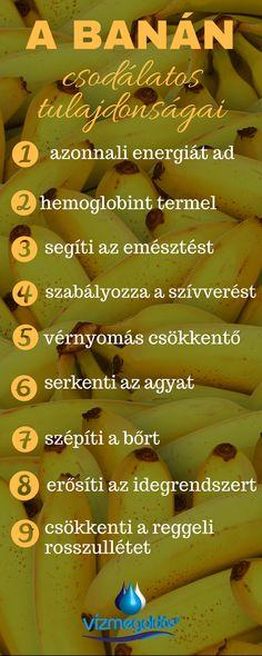 egészségesen élni és látni)