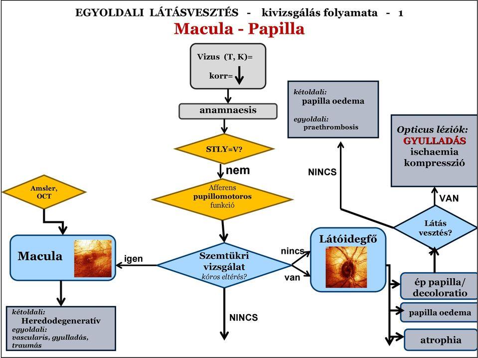 látás myopathia)