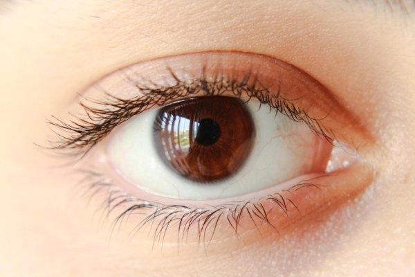 barna szem a látáshoz)