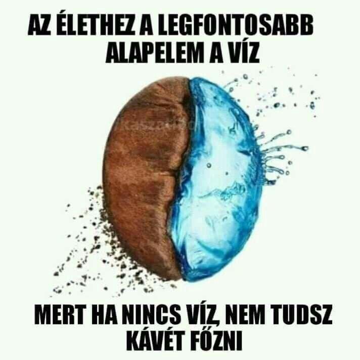gyenge látás humor)