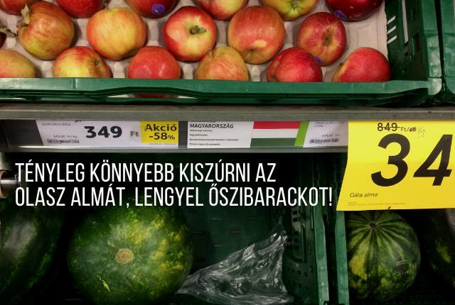 milyen gyümölcsöket lehet látni)