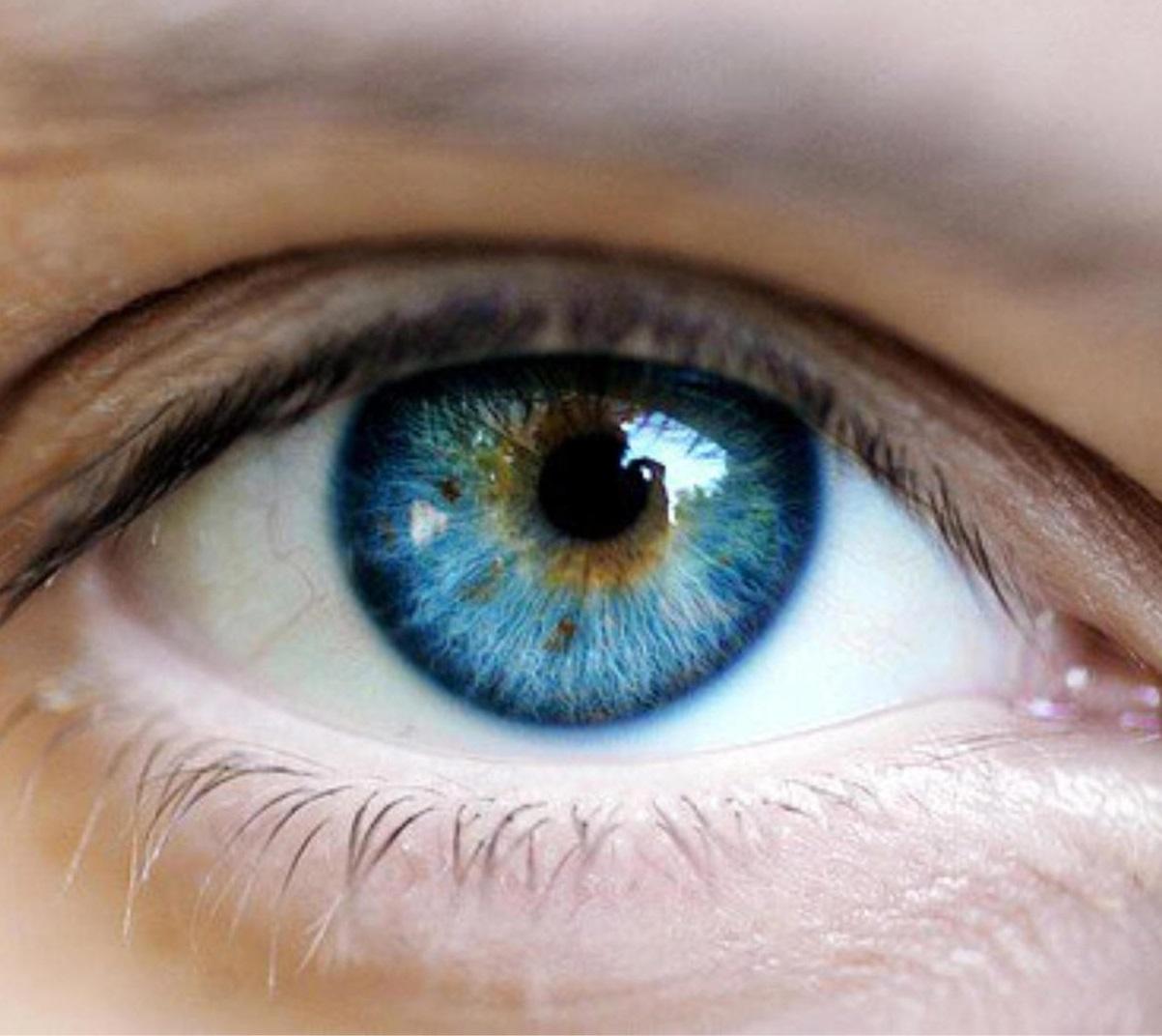 a látás helyreállítása a legújabb technológiákkal