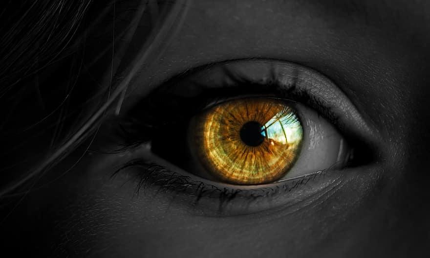 látás szürke háttér ipari látórendszerek