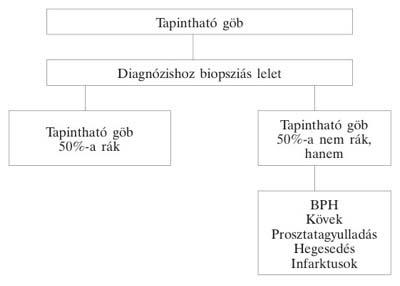 vizsgálatok a prosztatagyulladás gyanúja miatt)