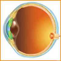 a látás forrásának kezelésére)
