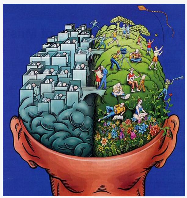 Érzékelés és észlelés, mint megismerő folyamatok | Képességfejlesztés az alsó tagozaton
