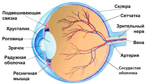 A diabéteszes retinopátia tünetei és kezelése