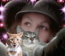 amikor a cica látást fejleszt)