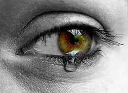 Vér, veríték, könnyek – döbbenetes látvány fogadja a látogatót