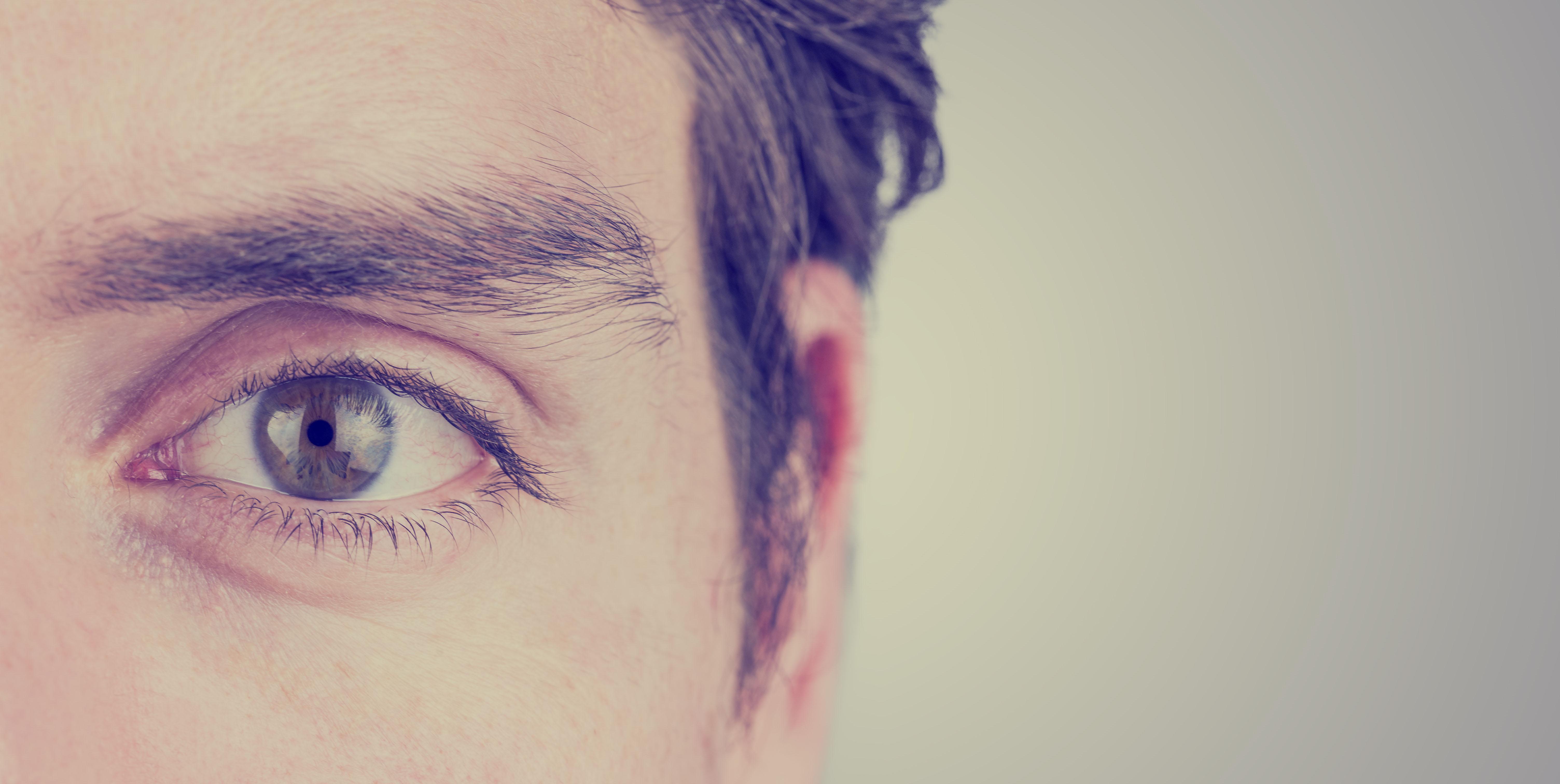hogyan segíti az embert a látás)