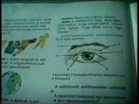 helyreállítsa a látás akupresszúráját)