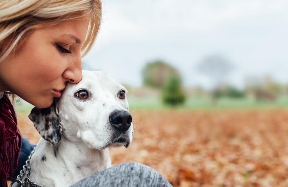 Hallásproblémák kutyáknál - 10 tipp a nyugodt mindennapokhoz