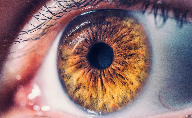 Szemünk fénye - amit a látásról tudni érdemes