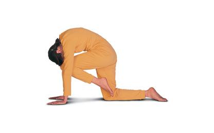 Ászanák és gyakorlatok jótékony hatásaik szerint csoportosítva, A jóga hatása a látásra