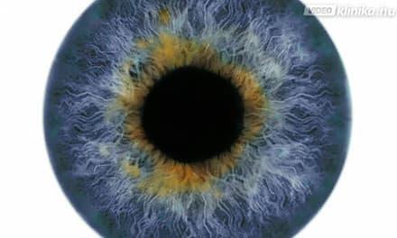látás sötét foltok a szemben