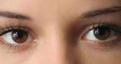 szem típusú látás