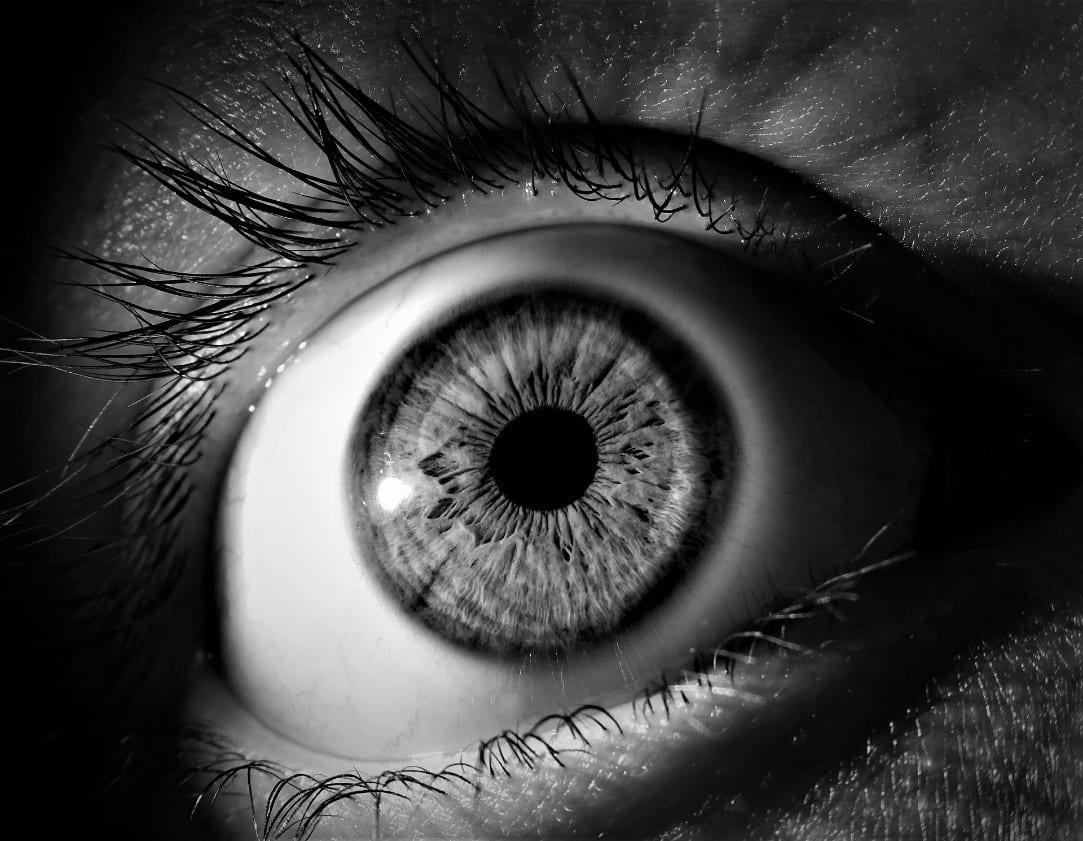 mi felelős a látásért a szemben)