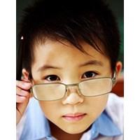A szem felépítése, a látás folyamata