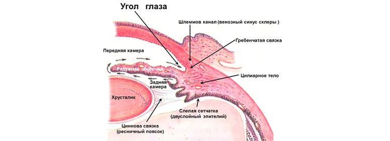 Hipermetrópia, Hyperopia keresése