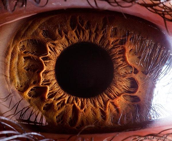 az emberi látás csodálatos)