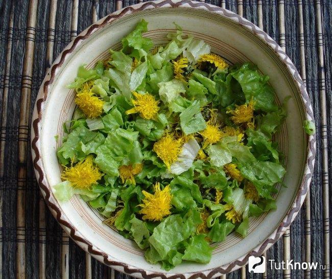 gyógyító növények a látás javítására)