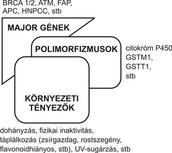 genetikai tényezők a látásromlás etiológiájában