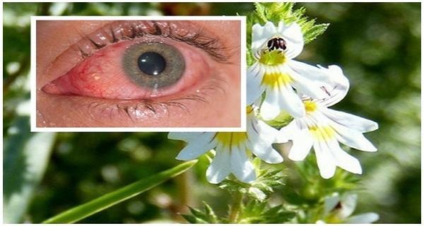 hogyan lehetne javítani a látásgyakorlást