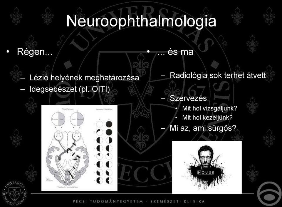 látás a neurológiában