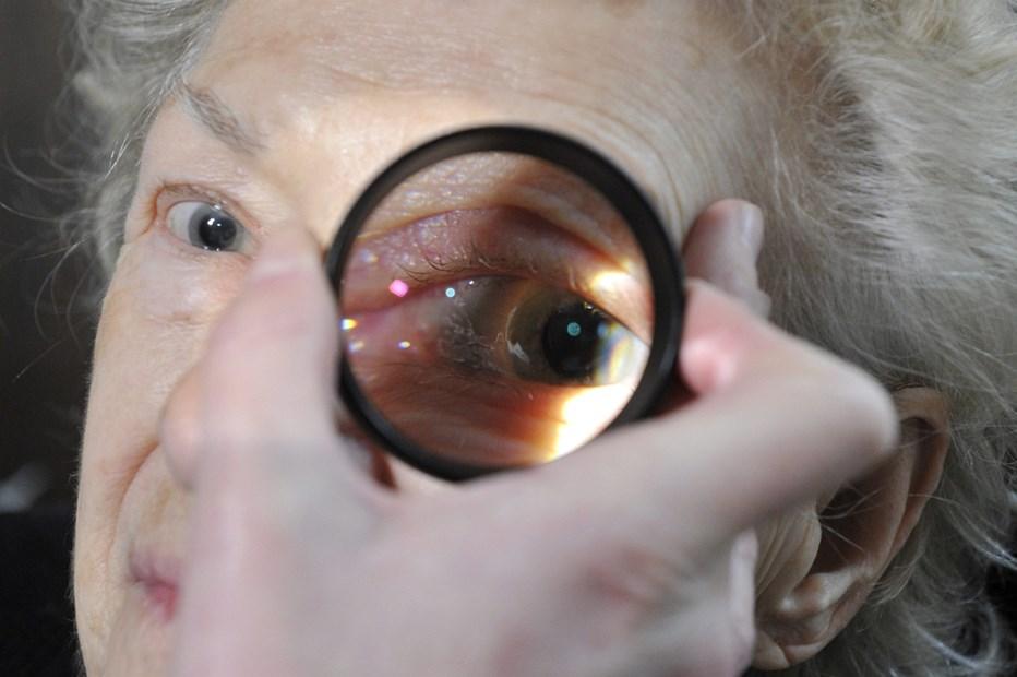javítsa a látást a mocsárban