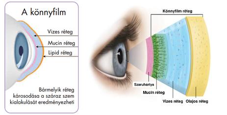 a távollátás fejleszti a szemgyakorlatokat telekinézis látás
