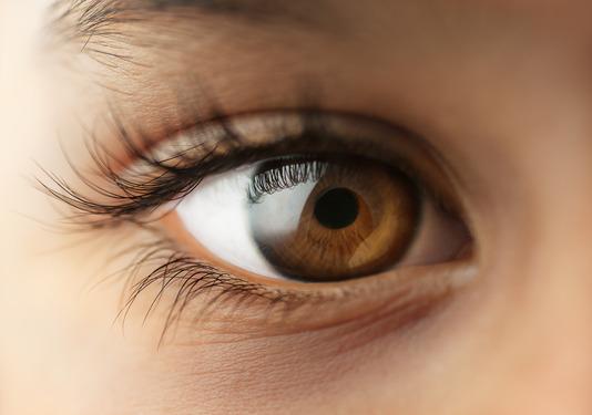 Élelmiszerek a szem látásához