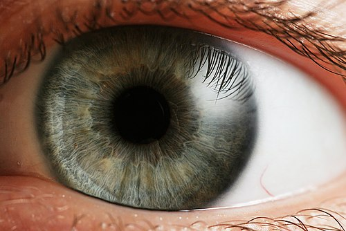orvos ellenőrzi a látást látás-helyreállító kontúr