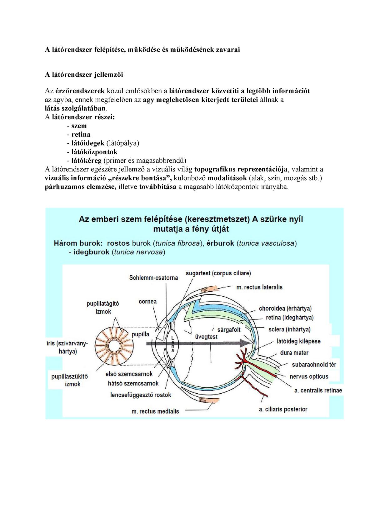 látás novocherkassk eszközök és szimulátorok a látás helyreállításához